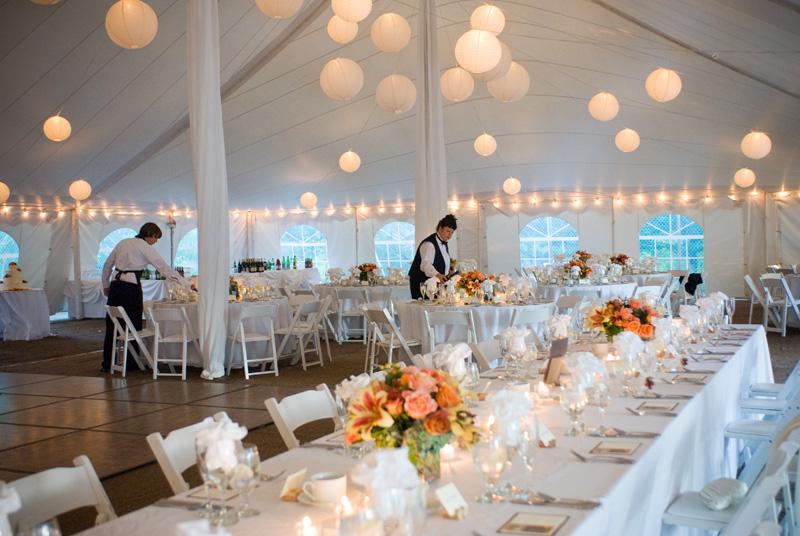 Backyard Love Fest Bellophoto Blog Cape Cod Wedding Photographers