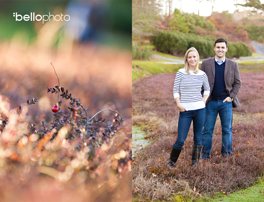 Willowbend engagement session ~ Cape Cod wedding photographers