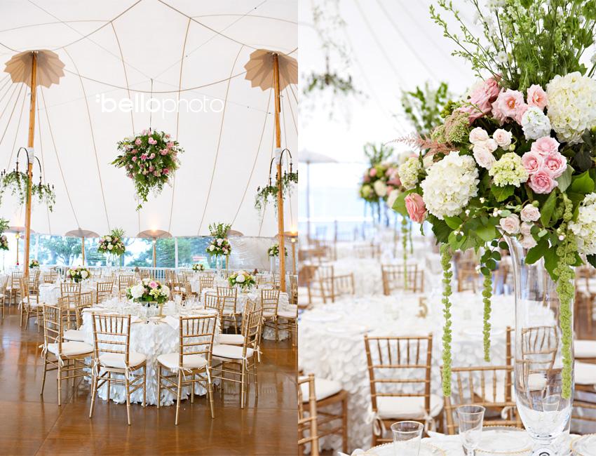 A ... & Jac u0026 Mittyu0027s Falmouth Wedding ~ Cape Cod Wedding Photographers ...